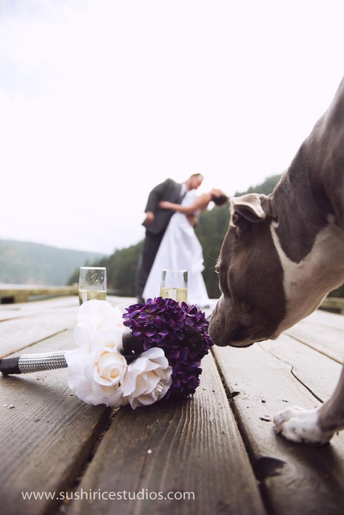 morningside_resort_wedding-26