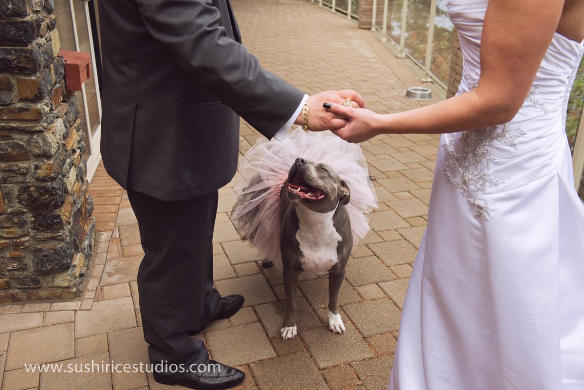 morningside_resort_wedding-33